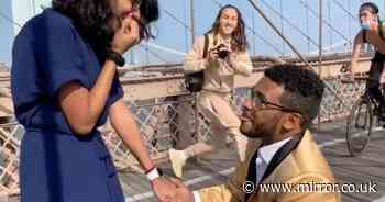 Dream proposal turns to disaster as photographer doesn't look where he's going