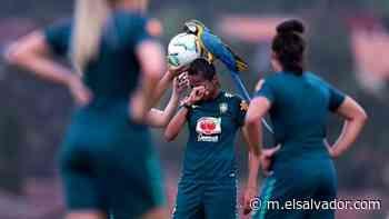 VIDEO: Guacamayo se roba todo el show en el fútbol femenino brasileño   Noticias de El Salvador - elsalvador.com