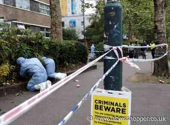 Croydon: Four crime scenes searched over Sgt Ratana's death