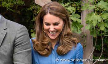 Kate Middleton stuns in chic denim shirt dress to meet Sir David Attenborough