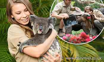 Pregnant Bindi Irwin shares touching quote by her late father Steve Irwin