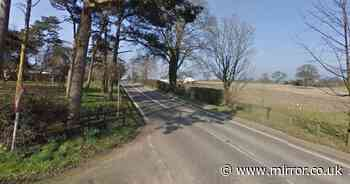 Man, 22, and woman, 32, killed after car smashes into tree