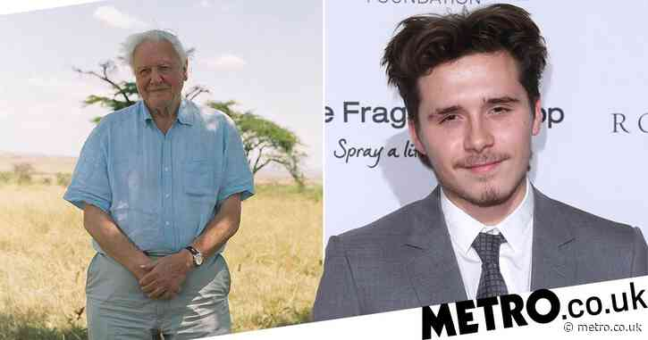 Brooklyn Beckham captures Sir David Attenborough in iconic set of photos for new film: 'I was so nervous'