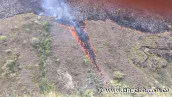 800 hectáreas afectadas por incendio forestal en el municipio de Tesalia • La Nación - lanacion.com.co