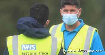 Latest coronavirus figures for Devon released - Devon Live