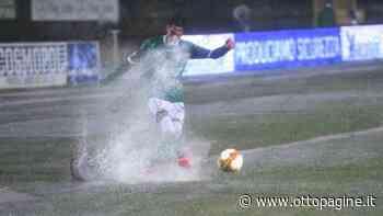 Avellino - Turris, vince la pioggia. La fotogallery - Ottopagine