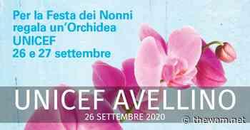 Unicef Avellino, la presidente: il Covid ha aggravato la violenza sui minori - The Wam.net