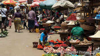Consumers lament high cost of foodstuff in Jos markets - Naija247news