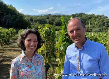 Donnafugata Weine mit hohem Wiedererkennungswert - Gourmetwelten - Das Genussportal - Gourmetwelten