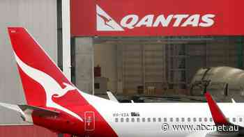 Qantas eight weeks away from running out of money at height of COVID-19 pandemic, court told