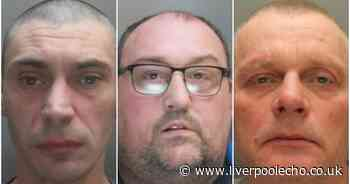 Ear chomping brother, bullet minder and murderer jailed this week