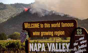 Famed Napa Valley winery is destroyed by the Glass Fire as 2,000 are ordered to evacuate