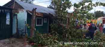 Vientos y lluvias provocaron emergencia en el norte de Neiva - La Nación.com.co