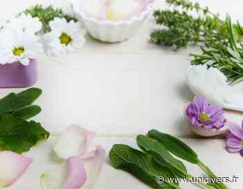 Atelier fabrication de produits ménagers et cosmétiques 100% écologique vendredi 16 octobre 2020 - Unidivers
