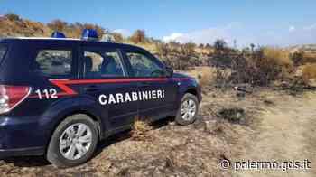 Sorpreso ad appiccare un incendio a Ciminna, l'arrestato è un forestale - Giornale di Sicilia