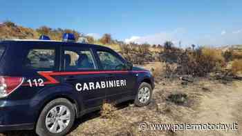Incendio nella riserva naturale di Ciminna, convalidato l'arresto del piromane: è un forestale - PalermoToday