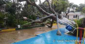 Vendaval causó graves emergencias en Barranquilla y el municipio de Tubará - Blu Radio