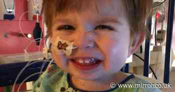 Children's life-saving heart transplants double thanks to Mirror campaign