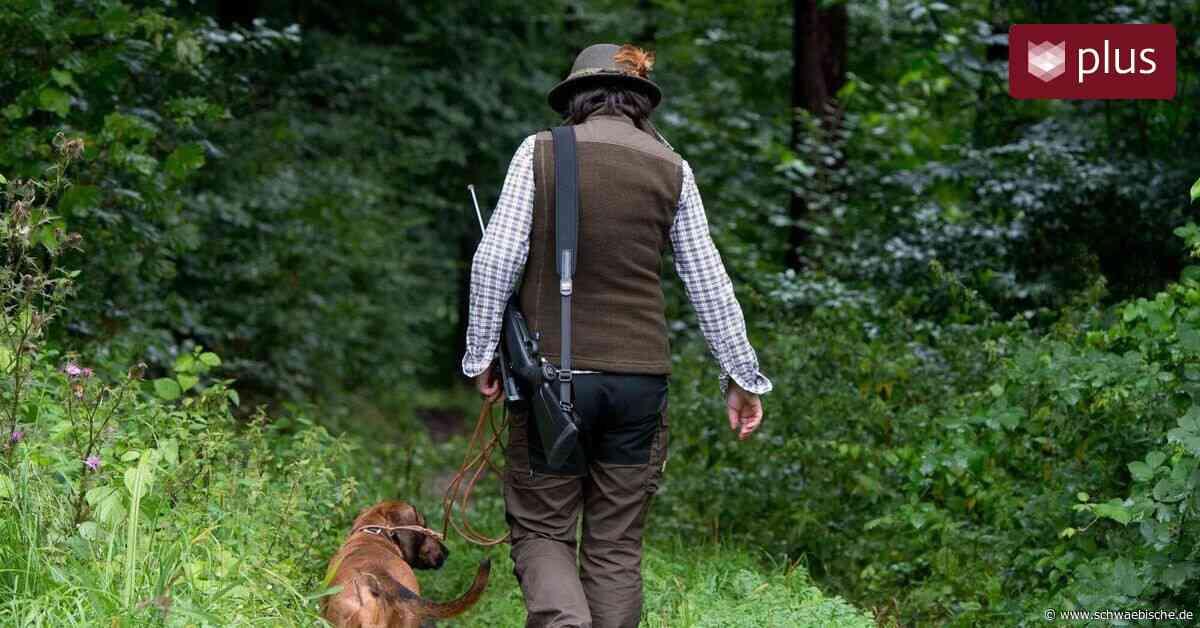 Jagdhunde sind in Bopfingen ab sofort steuerfrei - Schwäbische