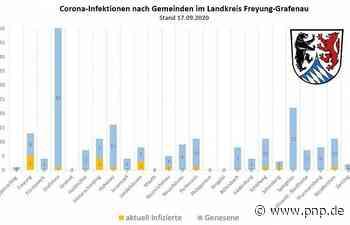 19 Infizierte in FRG – Keiner im Krankenhaus - Passauer Neue Presse