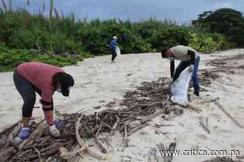 Alcalde de Pedasí denuncia que personas ajenas al distrito ensucian las playas - Crítica Panamá