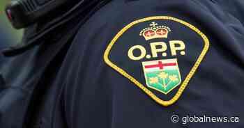 1 arrested after stabbing outside Trent Hills residence: OPP - Global News