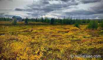 Autumn outside Kuujjuaq - Nunatsiaq News