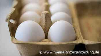 Soviele Eier dürfen Sie pro Woche wirklich essen