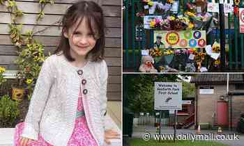 Pictured: Tragic girl, six, who died after being crushed to death by falling tree at school