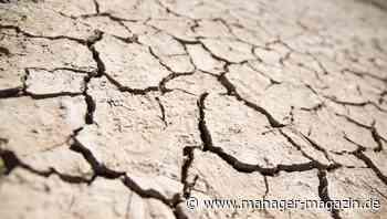 Risikomanagement: So vermeiden Sie Katastrophen