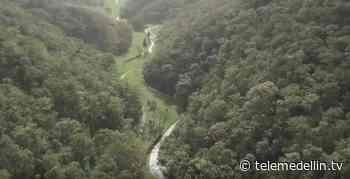 En el Alto de San Miguel se busca fortalecer el turismo rural - Telemedellín