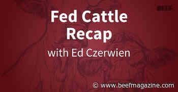 Fed Cattle Recap | Cash prices slog higher