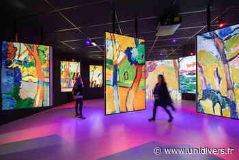 « Vision impressionniste » au château d'Auvers-sur-oise Château d'Auvers samedi 14 novembre 2020 - Unidivers