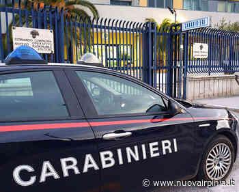 Titolare di un 'Canapa shop' denunciato ad Avellino dai Carabinieri - Nuova Irpinia