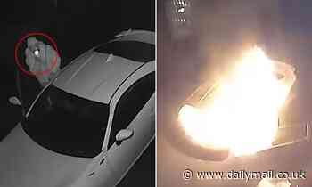 Melbourne thief flees after setting car alight while he's still inside the vehicle