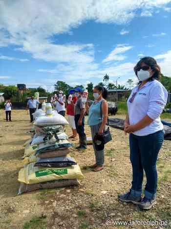 San Martín: Evaluarán acciones para mitigar el cadmio en el cacao - INFOREGION