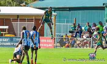 Stunning photo of an Aussie Rules player's sky-high goal celebration takes social media by storm