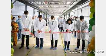 Third stage of Sayuri greenhouse complex opened in Yakutsk, Russia - hortidaily.com