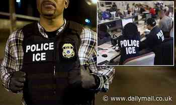 ICE 'preparing targeted arrests in sanctuary cities to boost Trump's image as law & order president'