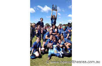 Raymond Terrace Roosters girls wrap up strong seasons - News Of The Area