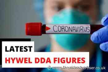 19 coronavirus cases found across Hywel Dda - Tivyside Advertiser