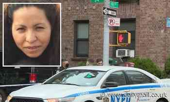 Mother-of-three killed after stray bullet hit her in the head in New York City apartment