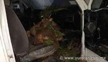 Vandalizan camión recolector de basura en Muna - El Diario de Yucatán