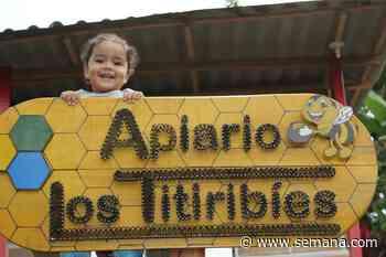 La alianza que está transformando al municipio de Titiribí - Semana