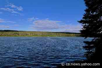 'Where prairie meets pine': Norquay, Sask., boasts spellbinding forested wilderness - Yahoo News Canada