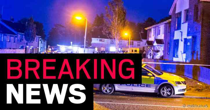Girl, 12, dies in house fire hours after man brutally murdered in same town