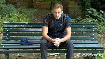 Kremlin critic Navalny tells magazine 'Putin was behind the attack'