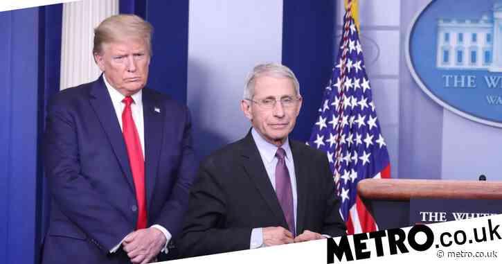 Donald Trump named world's biggest coronavirus conspiracy theorist
