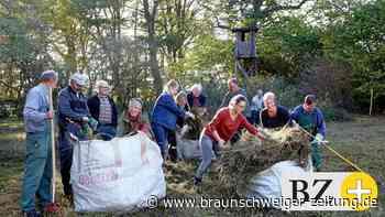 Biotopschützer melden drei Erfolge in Wipshausen