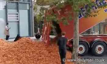 Tonnes of carrots are dumped outside Goldsmiths College in London